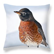 Is It Spring Yet? Throw Pillow