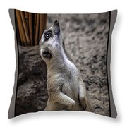 Is It You God Throw Pillow