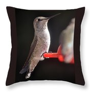 Is This Better Throw Pillow