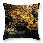 Is This The Way Out Throw Pillow