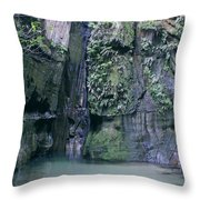 Isalo National Park 3 Throw Pillow
