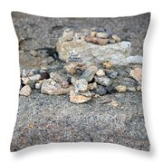 Ishi Throw Pillow