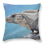 Isla Mujeres Iguana Throw Pillow