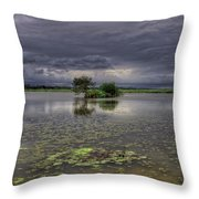 Island And Flowers Throw Pillow