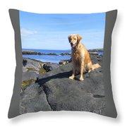 Island Dog Throw Pillow