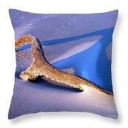 Island Driftwood Throw Pillow