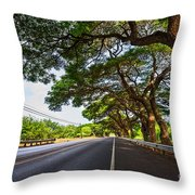 Island Drive  Throw Pillow