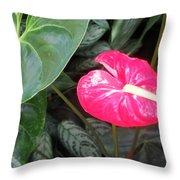 Island Flower Throw Pillow
