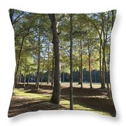 Island Fort Road Ninety Six National Historic Site Throw Pillow