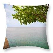 Island Hues Throw Pillow
