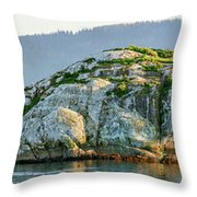 Island In A Lake, Glacier Bay National Throw Pillow