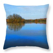Island In The Pond Throw Pillow