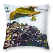Island In The Snow Throw Pillow