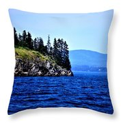 Island Of Pines Throw Pillow