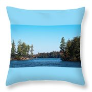 Island On The Fulton Chain Of Lakes Throw Pillow