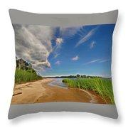 Island Shore Throw Pillow