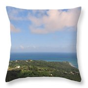 Island View From High Throw Pillow