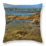 Isle Au Haut Beach Throw Pillow by Adam Jewell