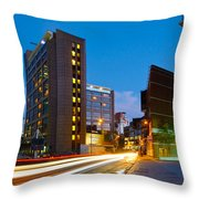 Isle Of Dogs. Throw Pillow