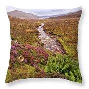 Isle Of Skye Scotland Throw Pillow