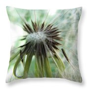 Isn't It Dandy Throw Pillow