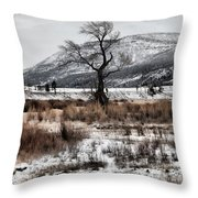Isolation In Yellowstone Throw Pillow