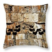 Israel Wall Bas Relief Throw Pillow