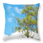 It Is A New Day Throw Pillow