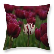 It Is Beautiful Being Different Throw Pillow by Bob Christopher
