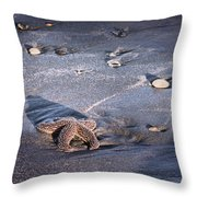 It Matters To This One Isle Of Palms Sc Throw Pillow
