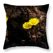 It Only Takes A Little Bit Of Light Throw Pillow