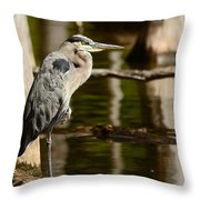 It Pays To Practice Yoga Throw Pillow by Lori Tambakis