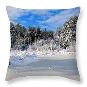 It Snow Reason Throw Pillow