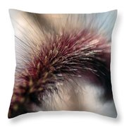 It Was On A Tuesday Morning In Late Summer... Throw Pillow