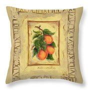 Italian Fruit Apricots Throw Pillow
