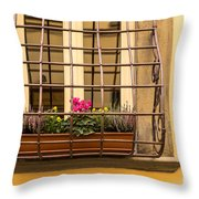 Italian Window Box Throw Pillow