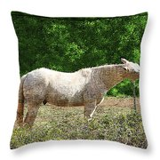 Itchy Horse Throw Pillow