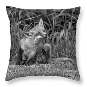 Itchy Monochrome Throw Pillow
