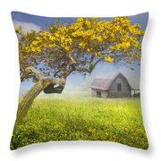 It's A Beautiful Day Throw Pillow by Debra and Dave Vanderlaan