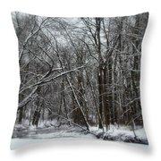 Its A Beautiful Winter Throw Pillow