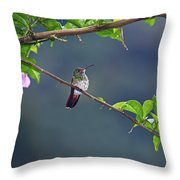 It's A Big World Out There... Throw Pillow
