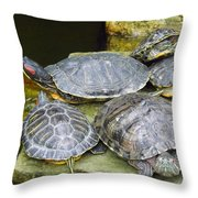 It's A Bit Crowded Here Can We Have Next Meeting At The Conference Room Throw Pillow
