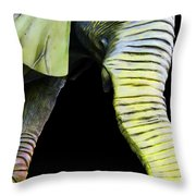 It's A Long Story - Unique Elephant Art Throw Pillow by Sharon Cummings