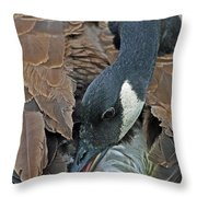 Its A Long Stretch Throw Pillow