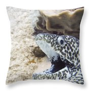 It's A Moray Throw Pillow