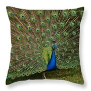 Its All About Him Throw Pillow