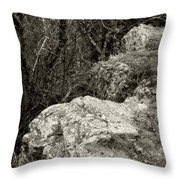 Its All Downhill After This Throw Pillow