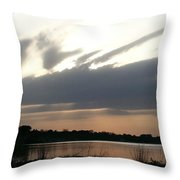 It's Cold Up There Throw Pillow