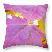 It's Fall Throw Pillow