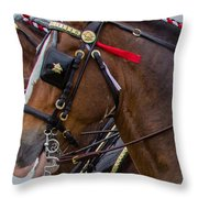 It's Pretty Horse Day Throw Pillow